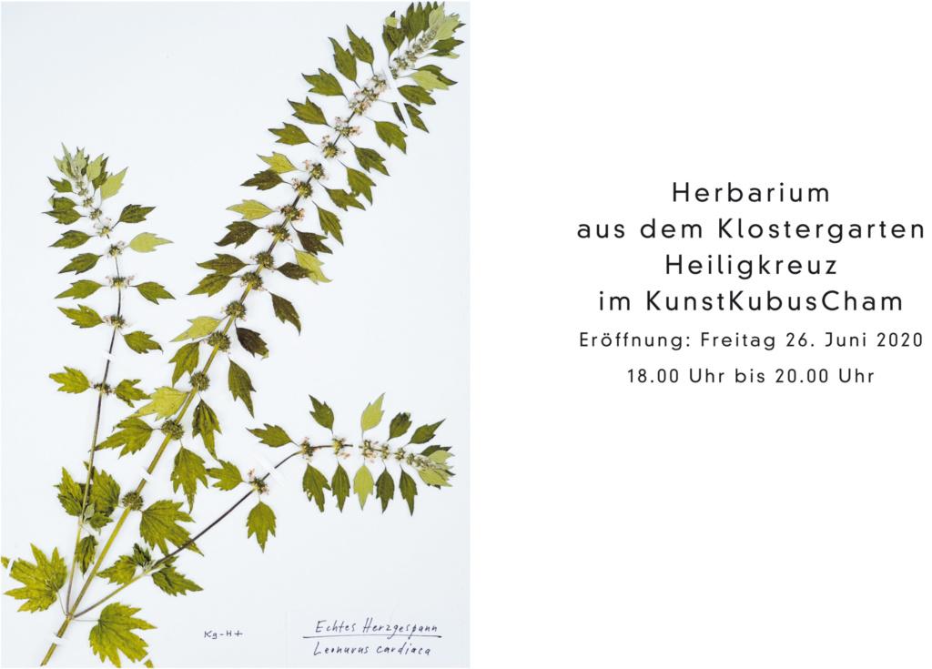 Einladung Herbarium